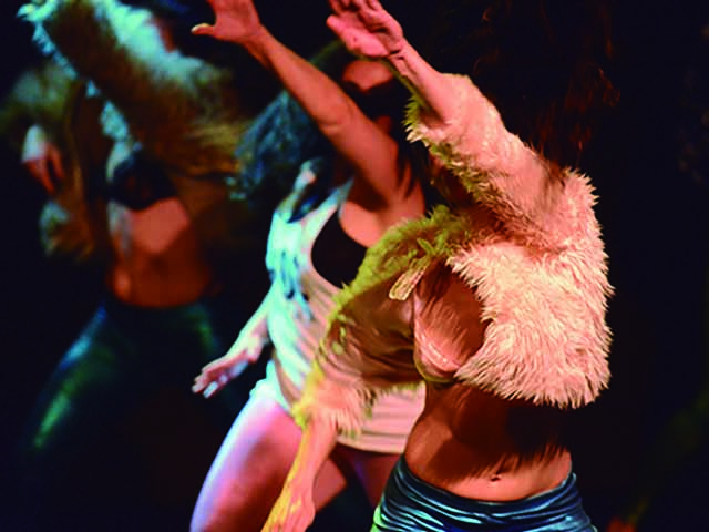 Yo quiero bailar toda la noche, por Proyecto Pelo